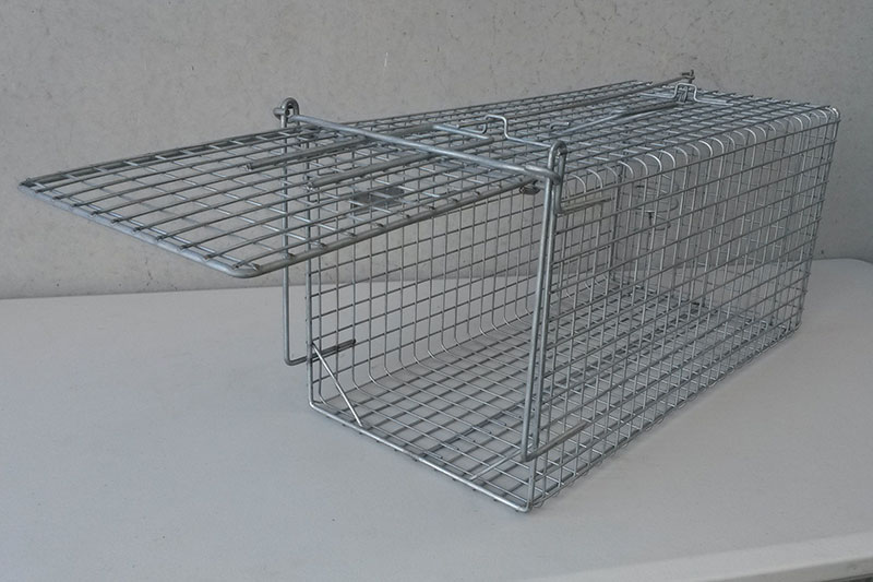Possum/Cat Trap